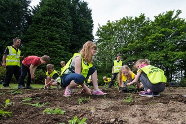 Growing Smarter, Granite City Aberdeen - planting for bees