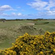 KEEP THE LINKS AT ST ANDREWS BEAUTIFUL DURING THE OPEN
